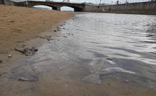 El Ayuntamiento de Gijón espera tener un diagnóstico del Piles en dos meses