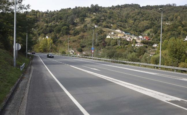 Aumentan los accidentes por jabalíes en el corredor del Nalón