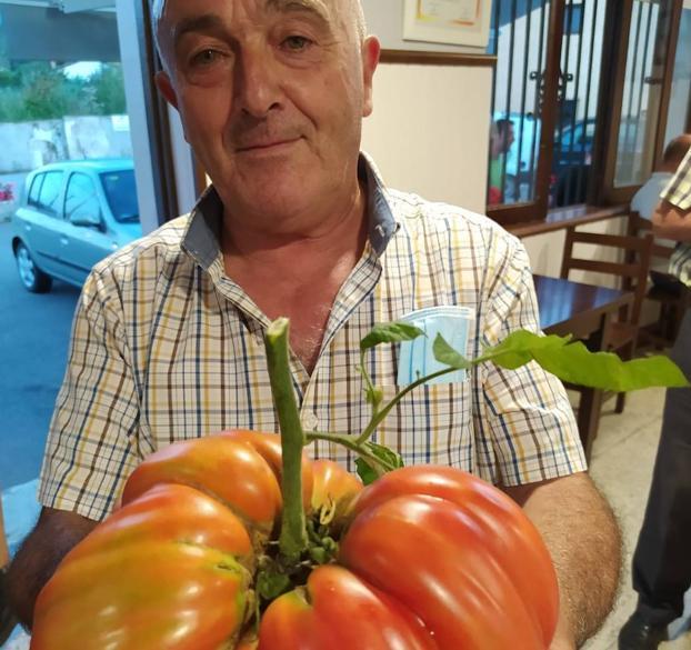 NUEVO AVATAR DE TRUMBO - Página 5 Tomatazo-llanes-kVPE-U1101048027426ytD-624x585@El%20Comercio