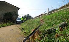 Accidente sin heridos en Las Rozas (Cangas de Onís)