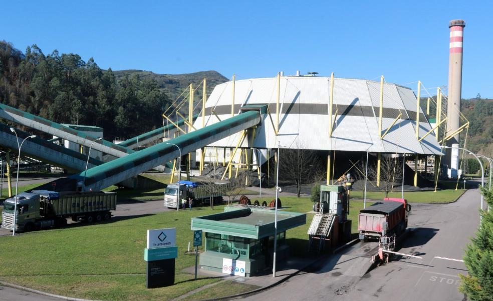 El sector forestal augura un 'boom' del empleo con la demanda de biomasa