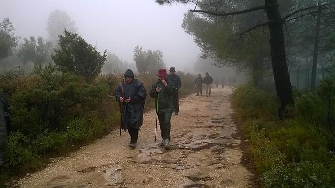 Pacientes con párkinson frente al Camino de Santiago
