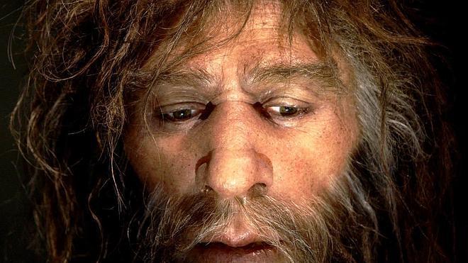 Un yacimiento español prueba que el neandertal también comía vegetales