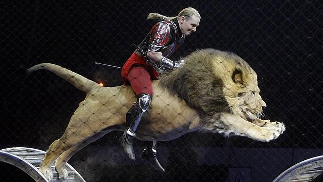 El Parlamento catalán aprueba la ley que prohíbe el circo con animales de «fauna salvaje»