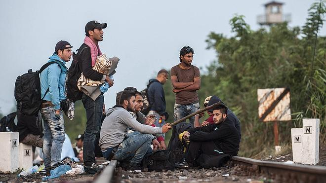 Cientos de migrantes llegan a Viena y toman trenes hacia Alemania