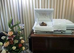 Velan a un perro en una funeraria de Puerto Rico