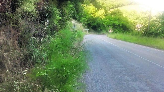 Foro reclama la reparación integral de la carretera entre Caborana y Cabañaquinta