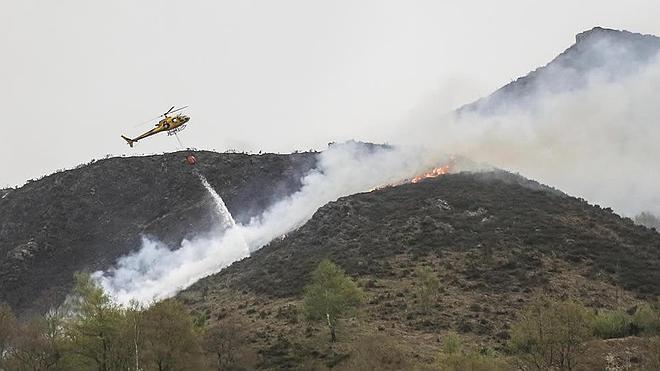 Arden 30 hectáreas de matorral en Laviana