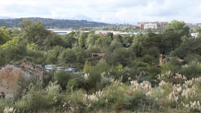 Siero defiende que Paredes es «el mejor sitio» para acoger al Real Oviedo